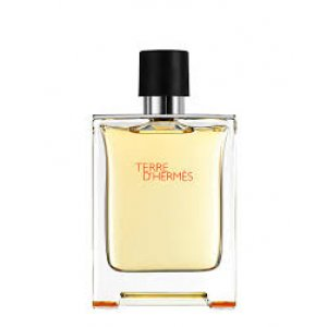 HERMES TERRE D' HERMES 100ML FOR MEN EDT V TESTER (3992)
